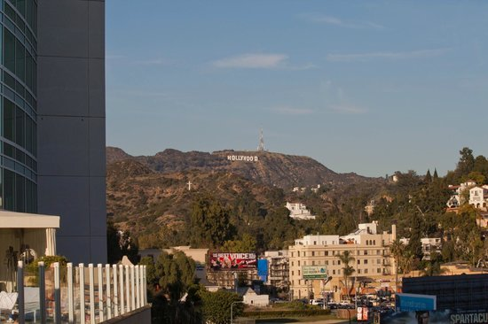 The Garland: hollywood sign