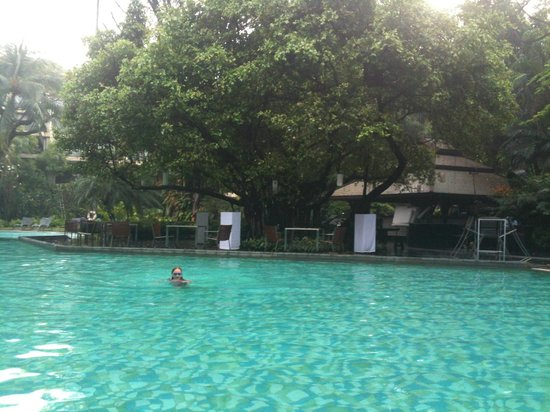 Swissotel Nai Lert Park:                   The pool never felt crowded