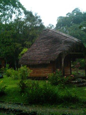 Arajuno Jungle Lodge:                   Cottage...