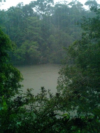 Arajuno Jungle Lodge:                   The River from the Main Room in the middle of the Rain!