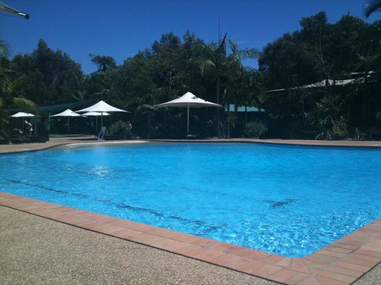 Angourie Resort:                   The pool at Angourie Rainforest Resort