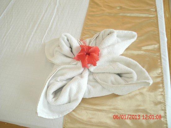 Amihan Del Sol: Towell decorated