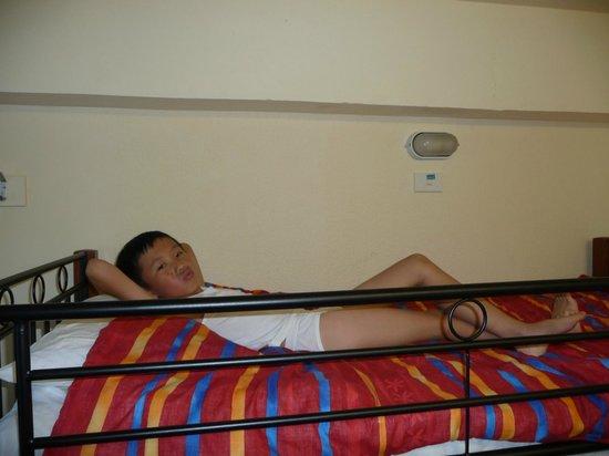 YHA Wellington :                                     Comfortable bunk bed