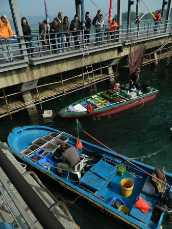 Sai Kung: Fresh from the pier !