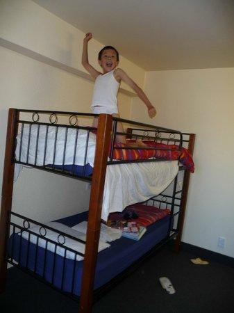 YHA Wellington :                                     Happy with the room
