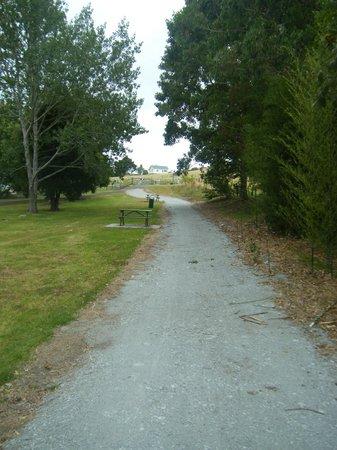 Twin Coast Cycle Trail Northland:                                     Twin Coast Cycle Trail