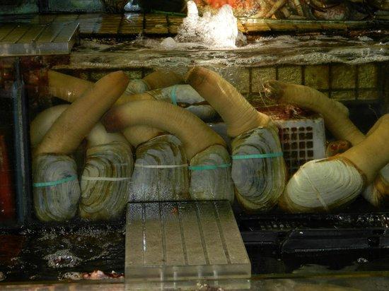Sai Kung: LongNeck clams