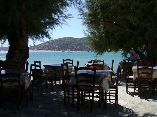 Restaurant To Steki :                   Déjeuner au bord de l'eau; Quel régal !