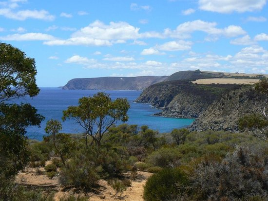 Western KI Caravan Park and Wildlife Reserve:                   North Coast