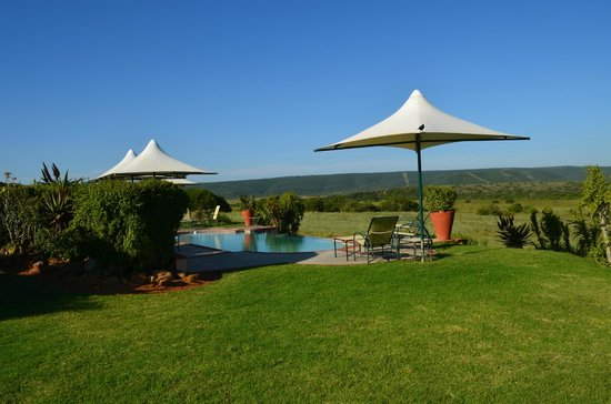 Shamwari Game Reserve Lodges:                                     The bottom pool area near to a watering hole for the animals
