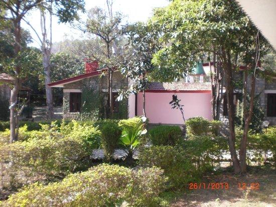 Corbett Roop Resort:                   lawn area
