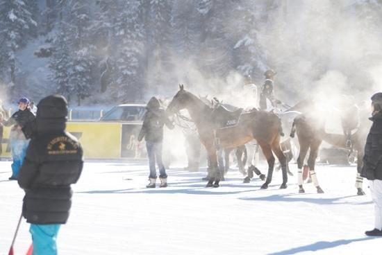 Kempinski Grand Hotel des Bains St. Moritz:                   Polo