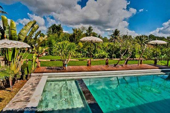 Villa Surya Abadi : view swimming pool