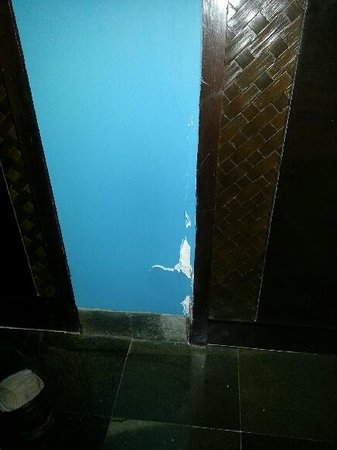 Pullman Bali Legian Nirwana:                   Holes in walls throughout hotel..5 star? yeah right!