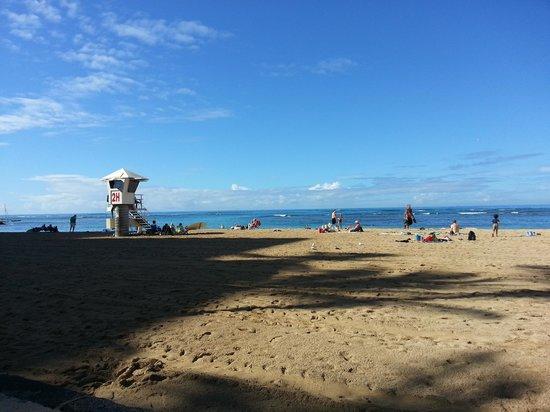 Lotus Honolulu at Diamond Head:                   quiet beach next door beautiful!