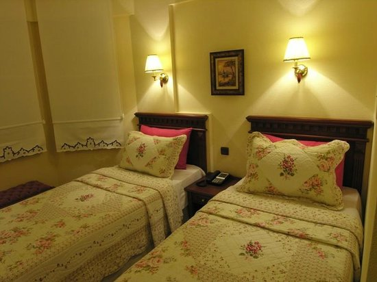 Emine Sultan Hotel: Twin Bedded Room