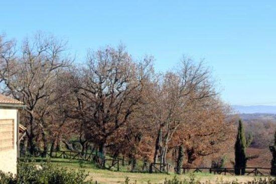 Casa al Prato:                   Panorama