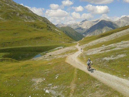 Guide Mountainbike Livigno:                   Prima il dovere....