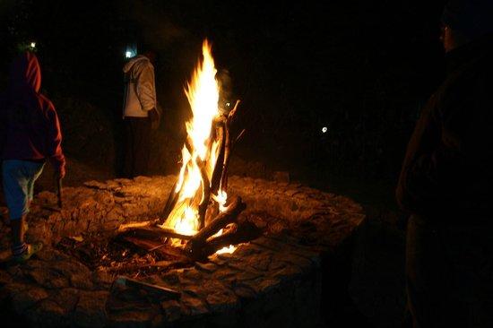 The Fern Creek : The bonfire