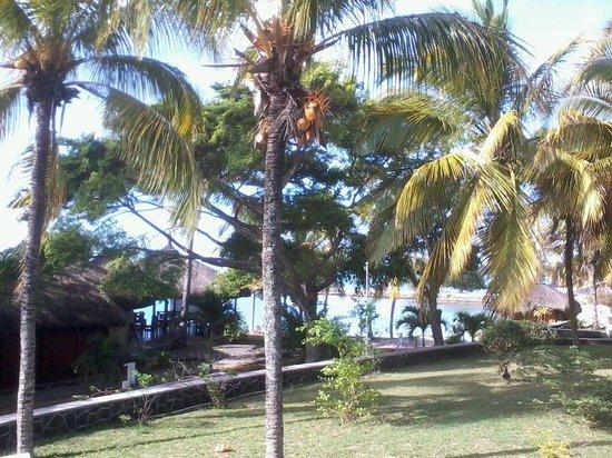 Mont Choisy Coral Azur Beach Resort:                   vista camera
