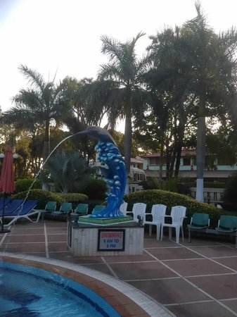 Radhika Beach Resort: Am Pool