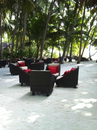Baros Maldives:                   Bar on the beach.