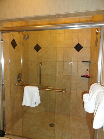 BEST WESTERN PREMIER Eden Resort & Suites: Master bathroom