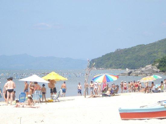 Zimbros Beach:                   verão 12/13 Zimbros inesquecível, deslumbrante!!