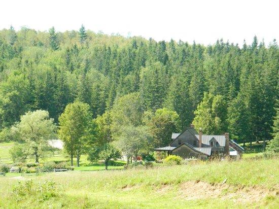 Windekind Farm:                   the main house and the grounds