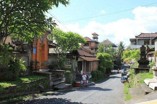 Teba House Ubud Guest House:                   宿の前の通り