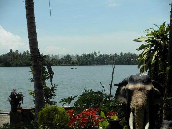 Sri Lancashire Guest House: River view