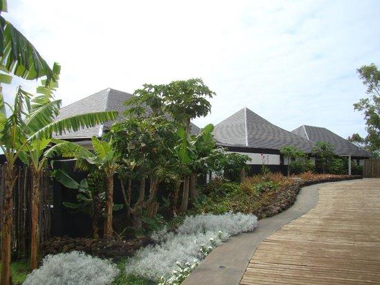 Hotel Altiplanico: 24