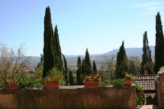 Agriturismo I Mandorli: View from one of the patios