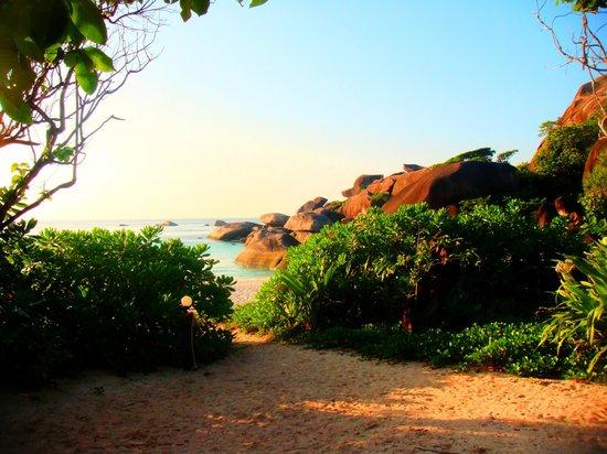 Similan Islands National Park:                   Similan #8 - Sunset