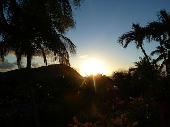 Habitation Grande Anse:                   La luminosité change tous les jours