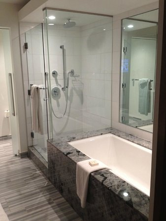 Fairmont Pacific Rim:                   full spa bathroom