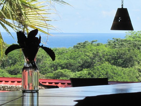 Brovilla Resort Hotel Restaurant: Ocean View from the Bar