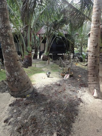 Little Corn Beach and Bungalow:                   Path to Casita