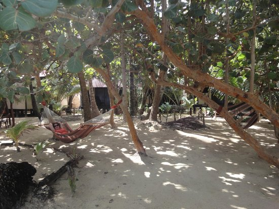 Little Corn Beach and Bungalow:                   Hangin' in the Hammock