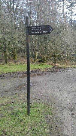 Coastal Kippford:                   Woodland walk to to the Mote of Mark,beware the highland cows
