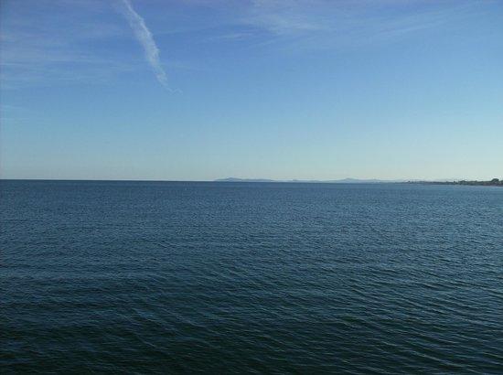Parc naturel Monte San Bartolo :                   san bartolo visto dal porto di rimini