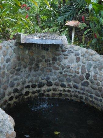 Hotel El Silencio del Campo :                   One of the smaller, more secluded hot springs