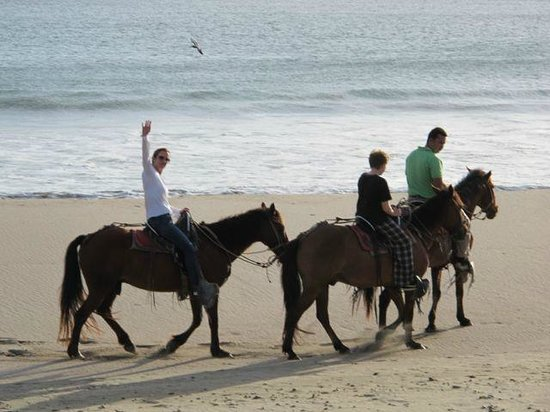 Morgan's Rock Hacienda and Ecolodge: The Horseback Ride ends on the Beach