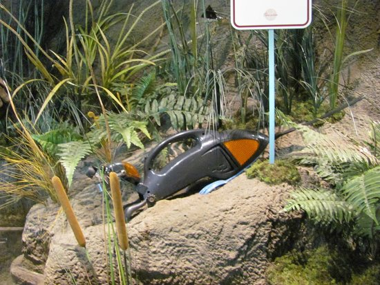 """Chattahoochee Nature Center :                   Inside the Discovery Center:  loved the 'animals"""" made out of everyday objects"""