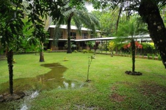 Manatus Hotel:                   Beautiful hotel grounds