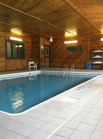 Comfort Inn Kokomo : pool area
