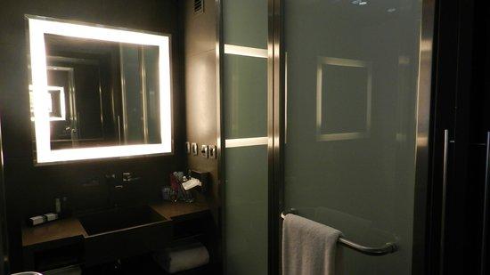 Novotel Buenos Aires:                   Bathroom