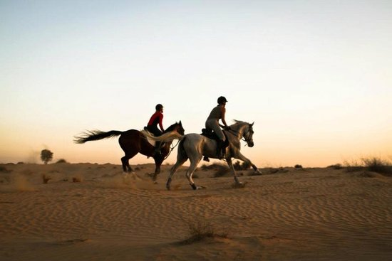 Al Sahra Desert Resort Dubai United Arab Emirates On