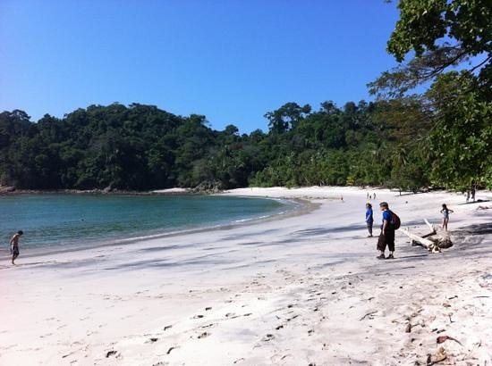 Jungle Beach Hotel at Manuel Antonio:                                     national park in Manuel Antonio beach