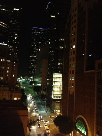 The Roosevelt Hotel: our view from our room